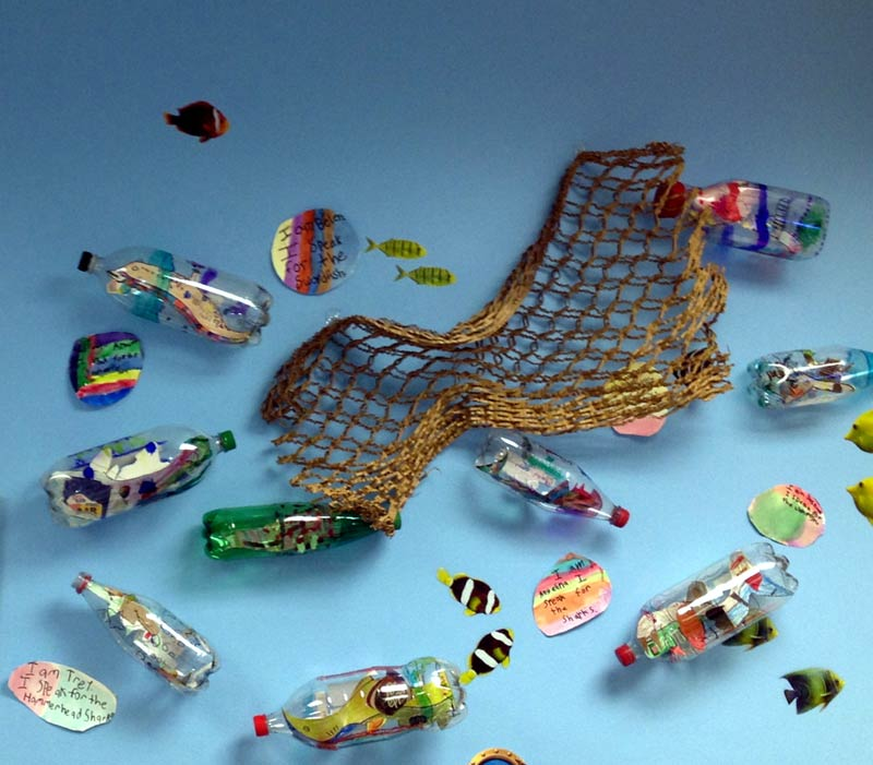 'Message in a Bottle' installation by Kristen Heeres at the Denver Aquarium was inspired by Aragorn's performance in the British Virgin Islands